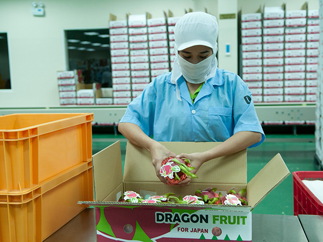 goodlifejp.com, packing house